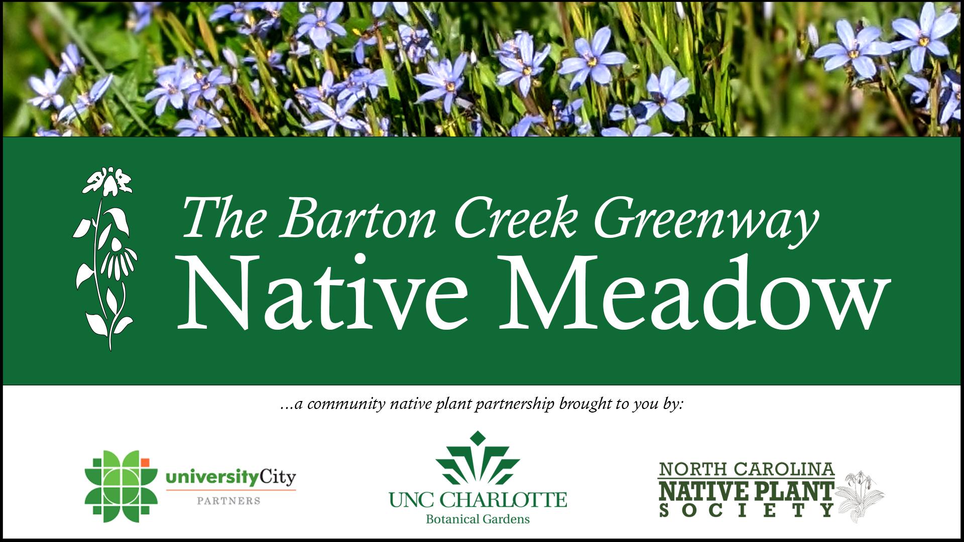 Barton Creek Banner 1